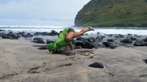 Ashley Flowers Yoga, Mindful Yoga in Portland Maine