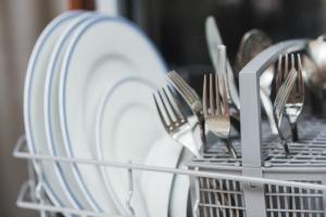 Meditations on Dish Washing